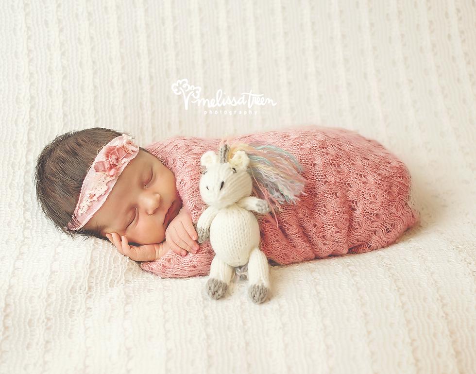 newborn baby with unicorn photo greensboro photographer burlington nc.jpg