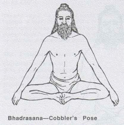 """""""Vielä esimoderninkaan Intian joogakentässä ei ollut mitään yksimielisyyttä siitä, mitä fyysisiä harjoituksia voitiin hyväksytysti kutsua joogaksi."""""""