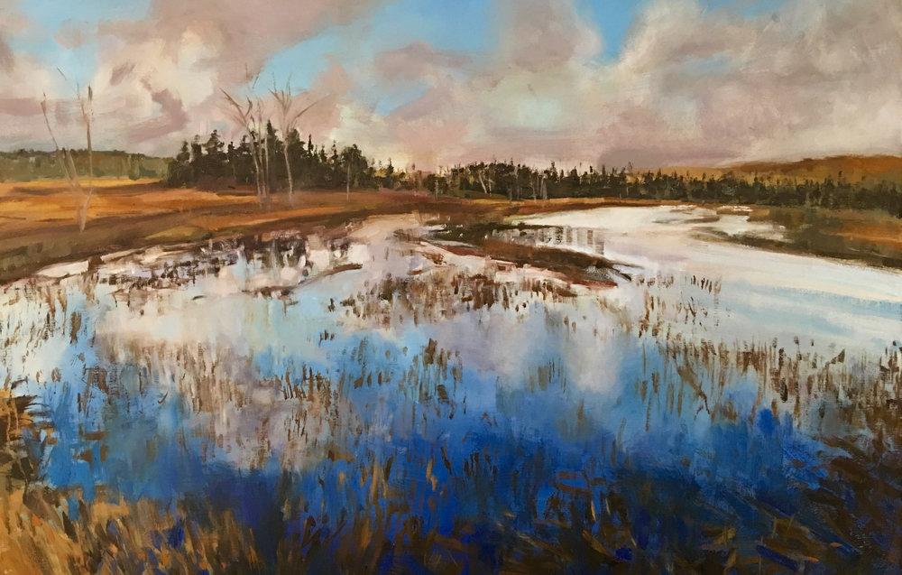 Adirondack Marsh
