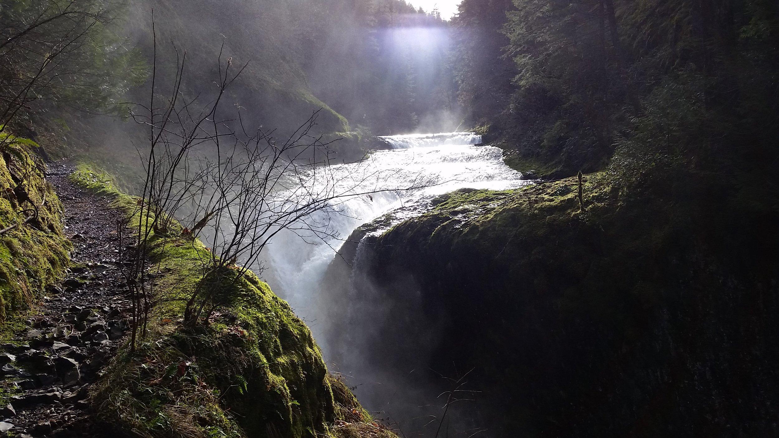A magical trail beside a beautiful creek