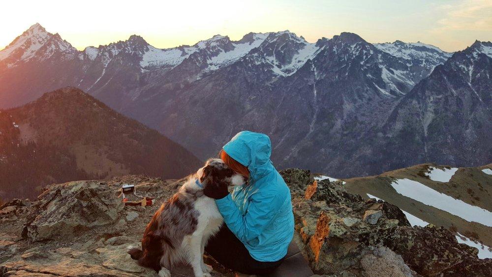 Nym the Adventure Dog on Navaho Peak