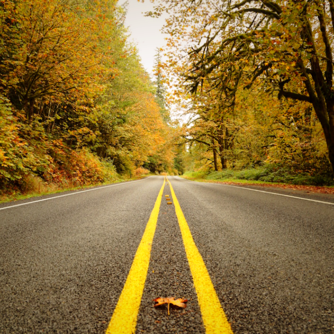 fall-road.png