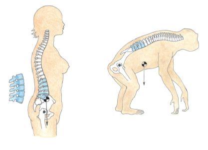 Painovoima vaikuttaa kehoomme erilailla kuin esi-isiimme