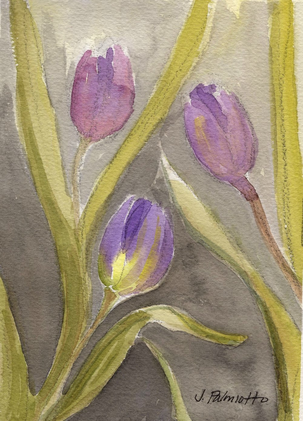 Watercolor_Purple_Beauty_Palmiotto.jpg