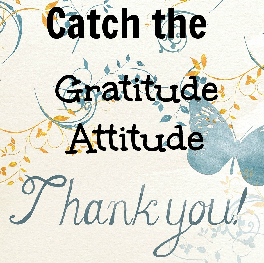 catch the gratitude attitude.jpg