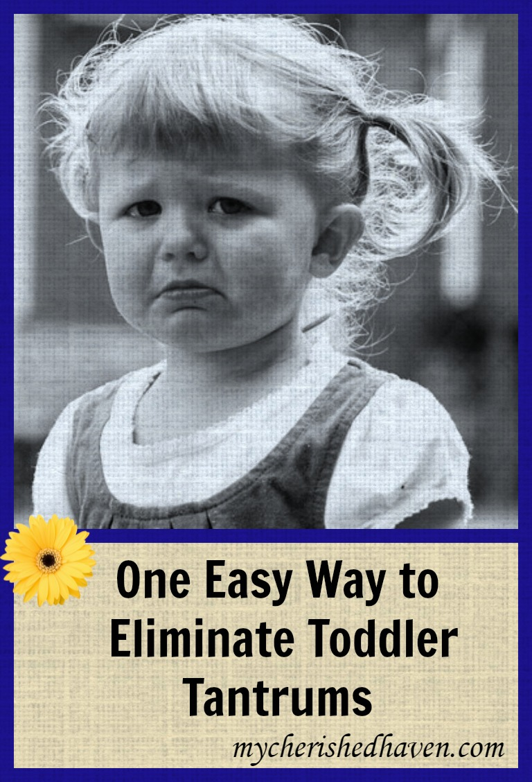 Toddler tantrums can be frustrating and leave you clueless as to how to manage them. This is one method that we have learned that almost completely eliminates toddler tantrums before they begin.