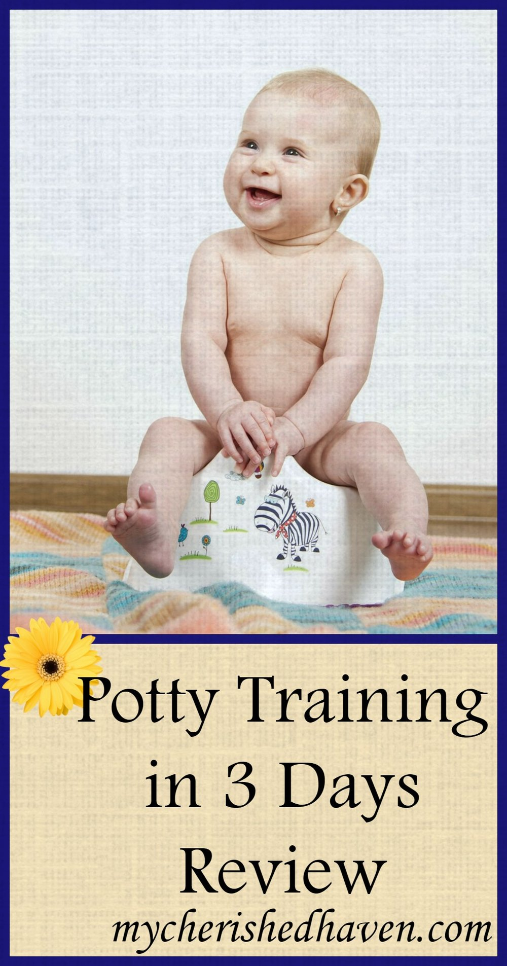 pottytrainingin3days