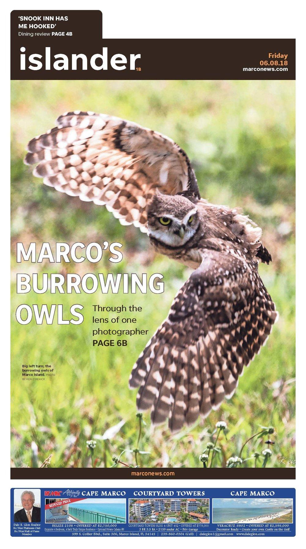 BILL GREEN PROOF SHEET MarcoEagle_OWLS 20180608_B01_B06_Page_1.jpg