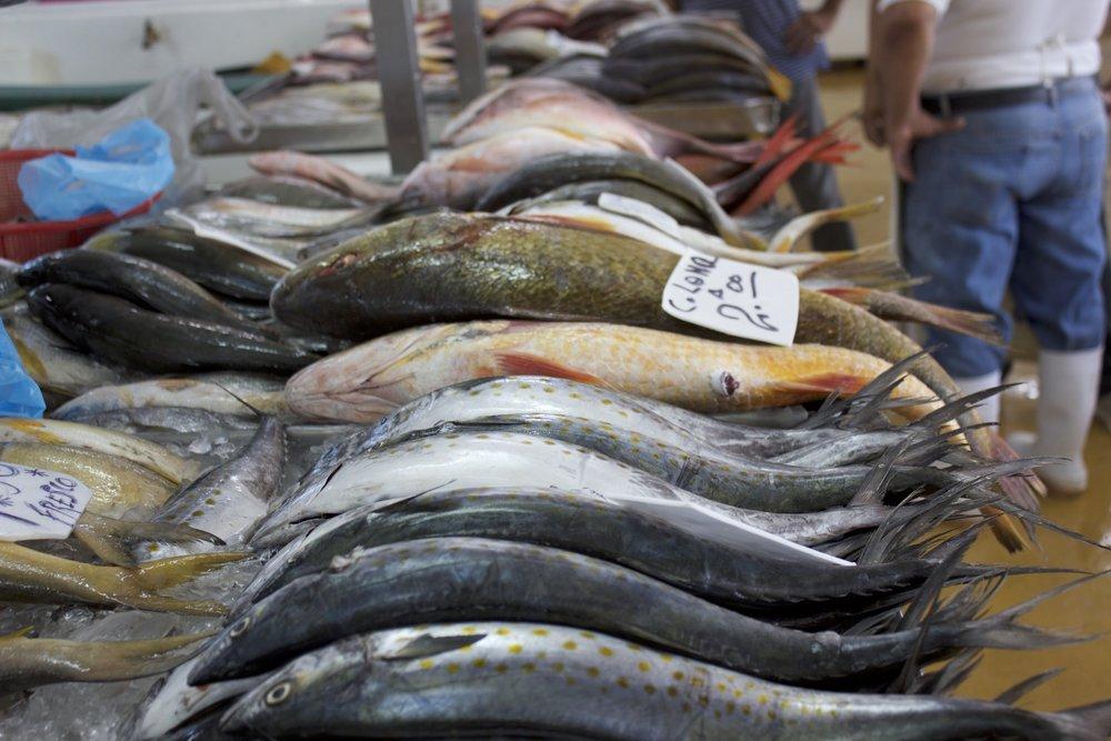 Fish at the market.jpg