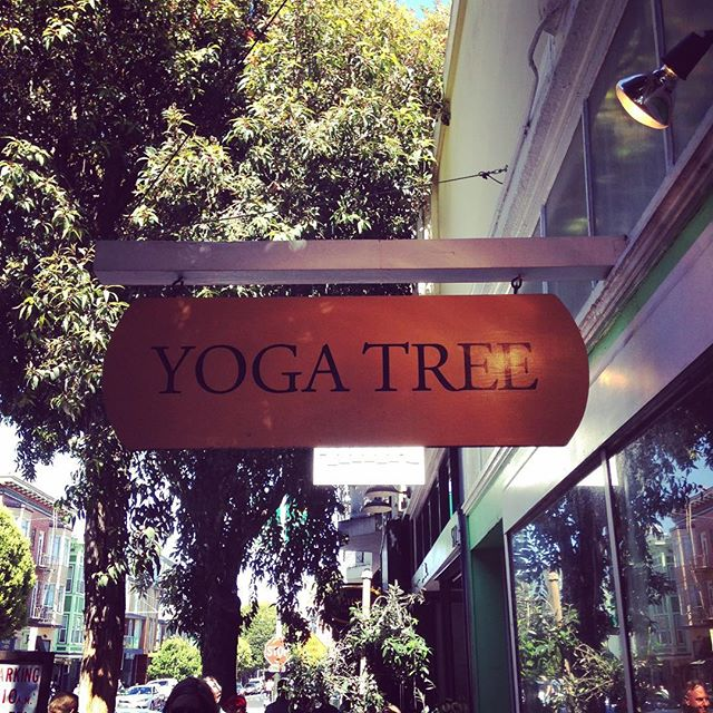 First place I did yoga in a studio. Still my favorite. Hayes Valley. Hot, but not pass out hot, spiritual, but not dear God is this a cult, and good workout but more of a shavasana comes first type place.