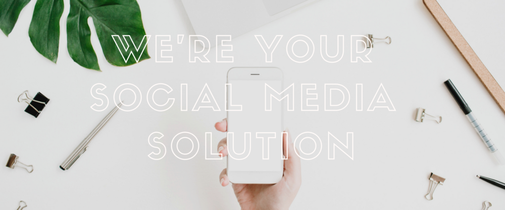 We're Pinckney Palm – Charleston's Boutique Social Media Solution!.png
