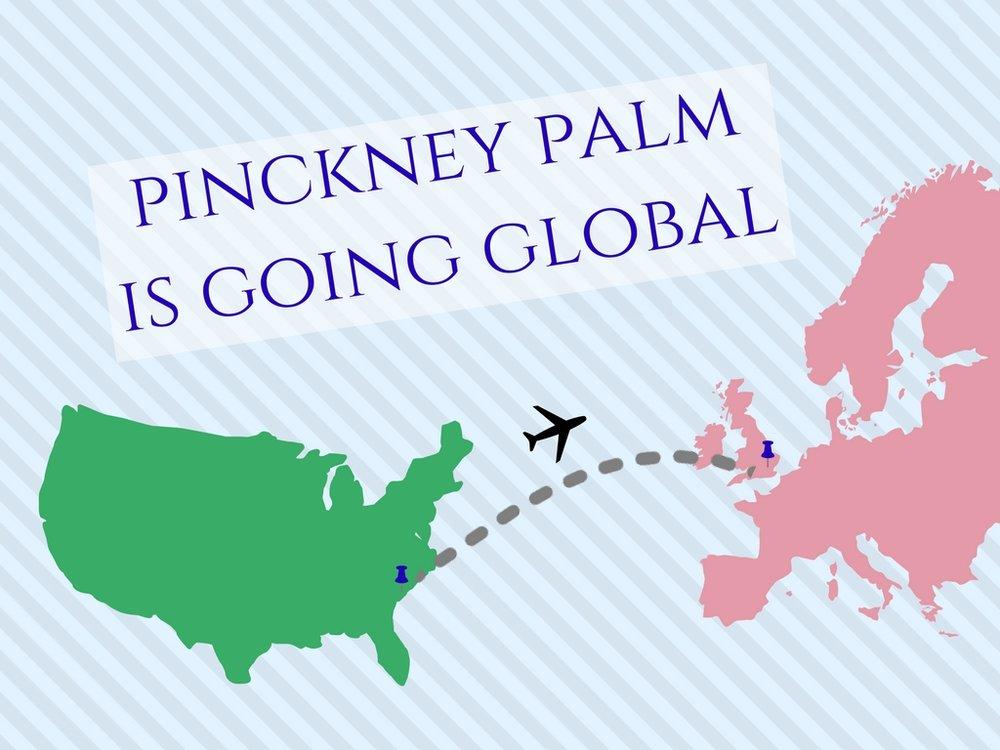 PinckneyPalmGlobal