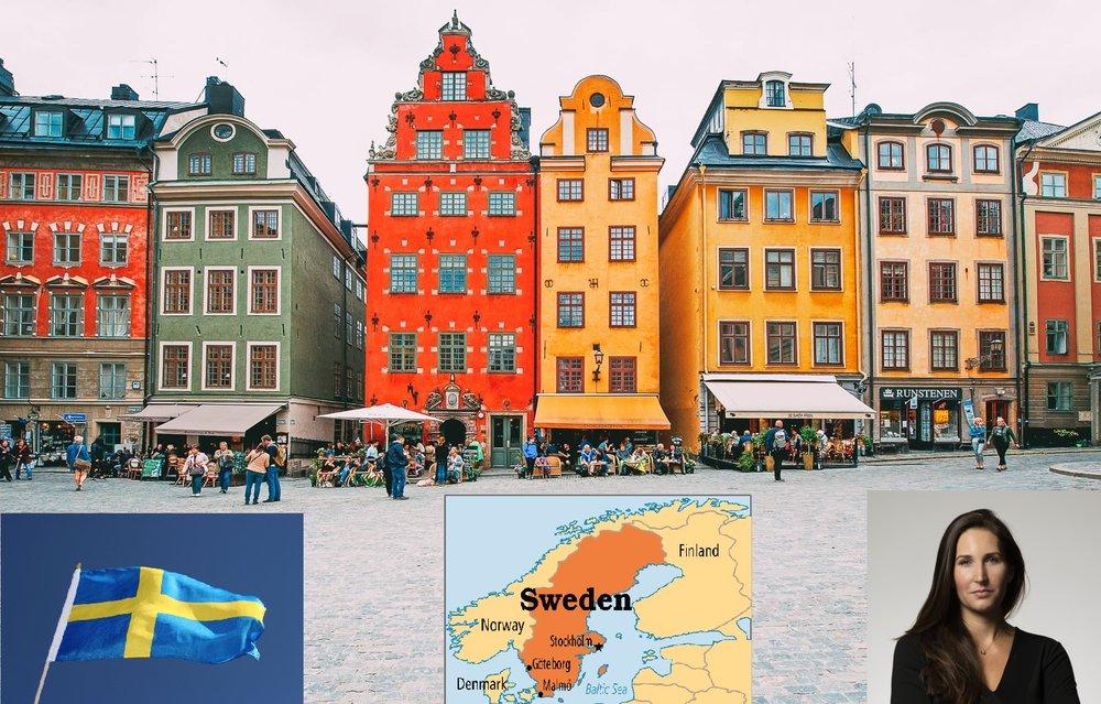 No More Swedish House Mafia the Swedish Secret Ingredient to Eradicate Corruption, Part IIIIII.jpg