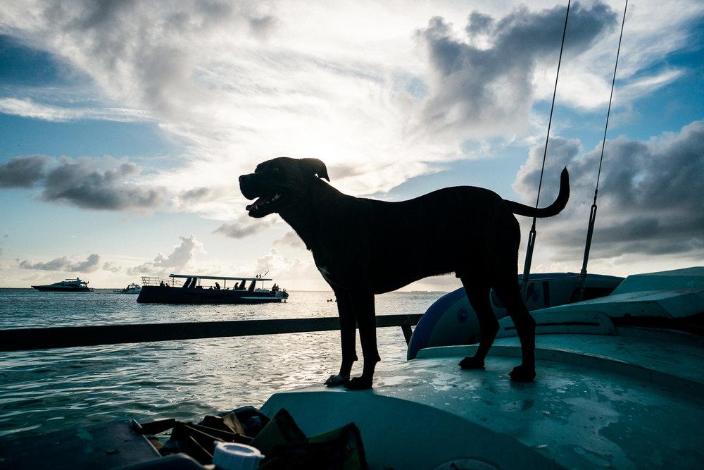 Isla Mujeres-12.jpg