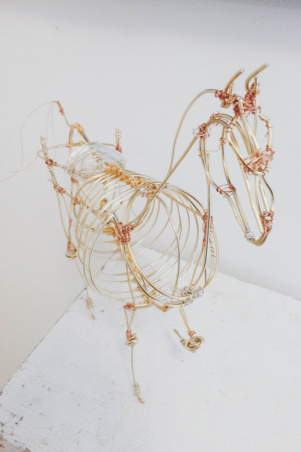 horse form.jpg
