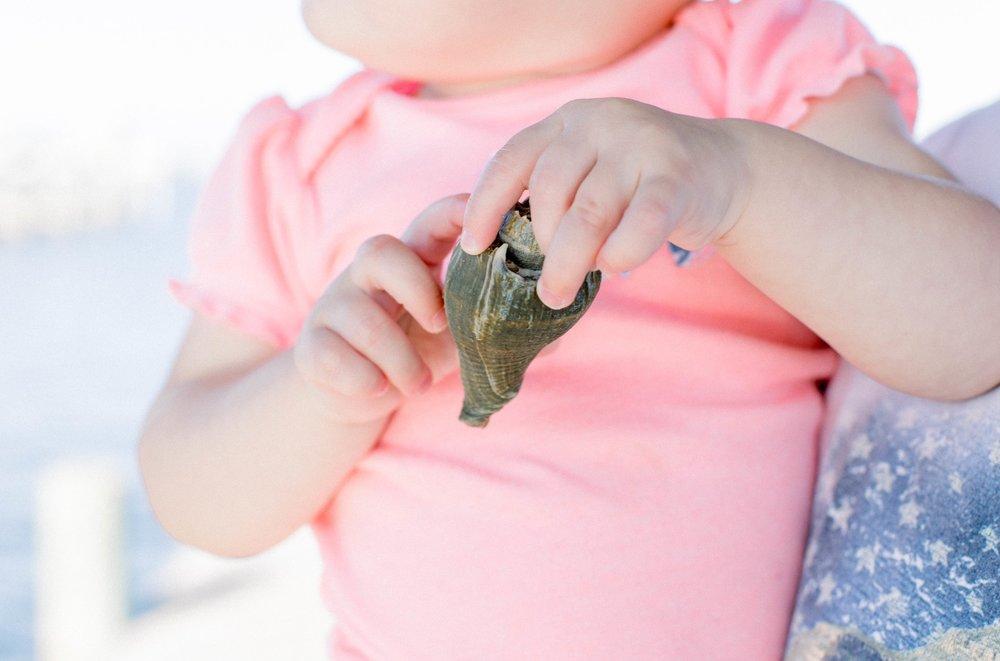 Hermit crab, beach baby, Florida girl