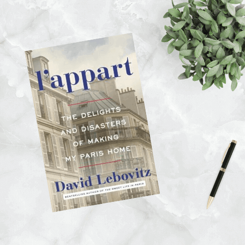 LAppart The Delights and Disasters of Making My Paris Home