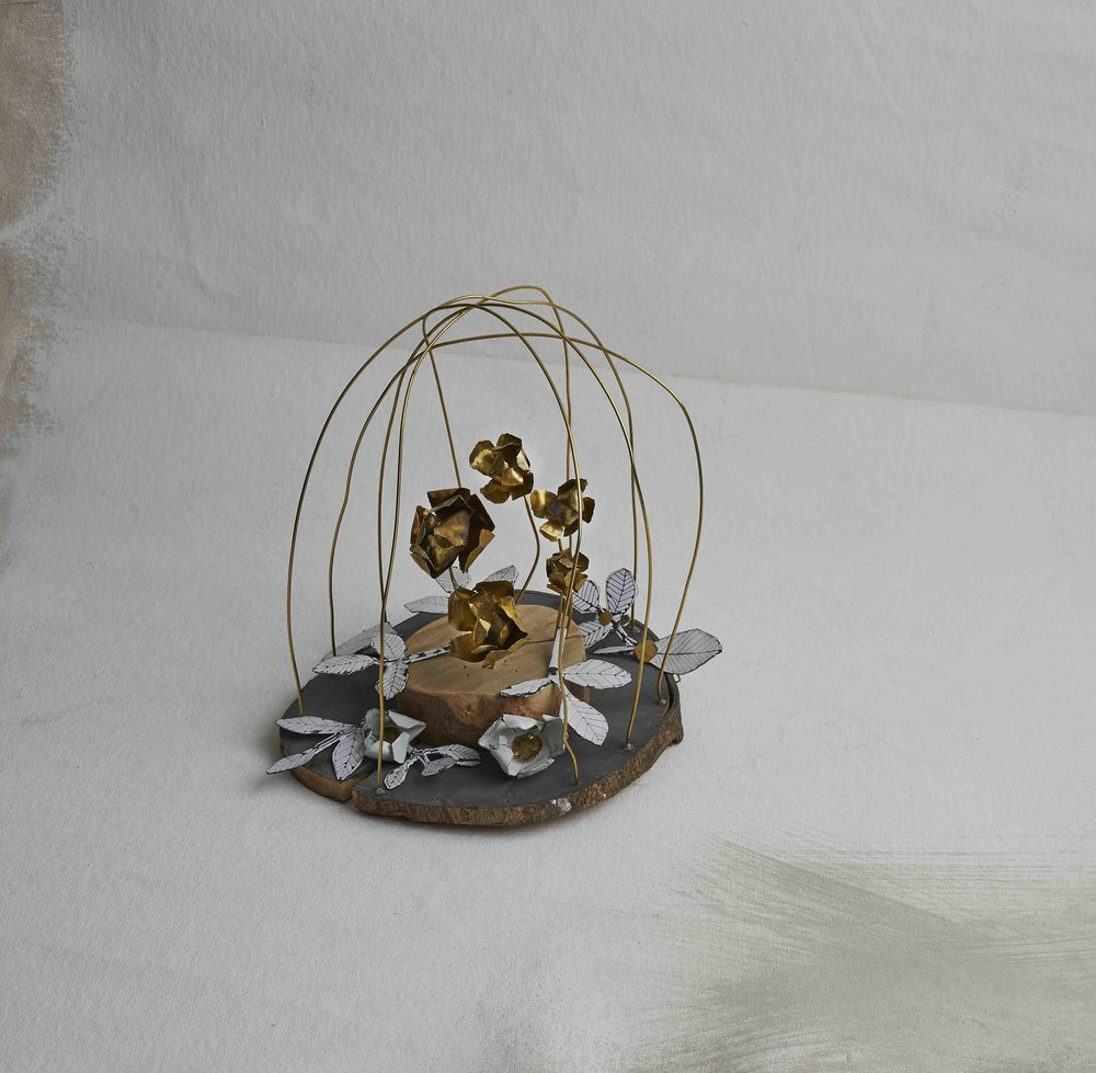 brassflower_dome.jpg