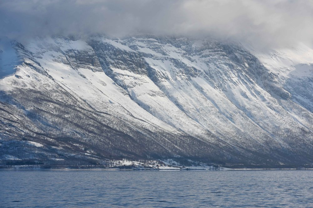 Fjord excursion, Arctic scenery near Tromso, Norway. Image©thingstodot.com