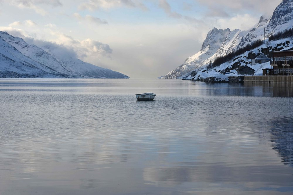 Arctic scenery around Tromso, Norway. Image©thingstodot.com