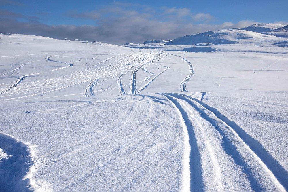 Snow mobile safari, Lyngen Alps, Arctic Circle,organized by Lyngen Lodge, Norway. Image©thingstodot.com