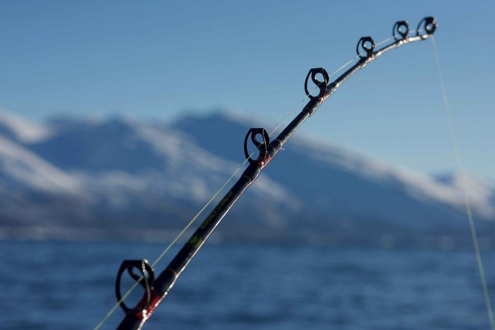 Fishing, Boat cruise, Lyngen fjords, organized by Lyngen Lodge, Arctic Circle, Norway. Image©thingstodot.com