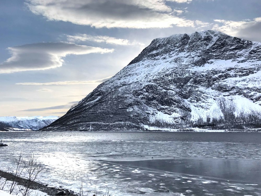 Fjords in Norway, Arctic Circle. Image©thingstodot.com