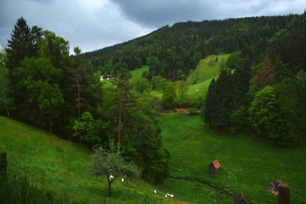Black Forest Mountains, Germany. Image©thingstodot.com