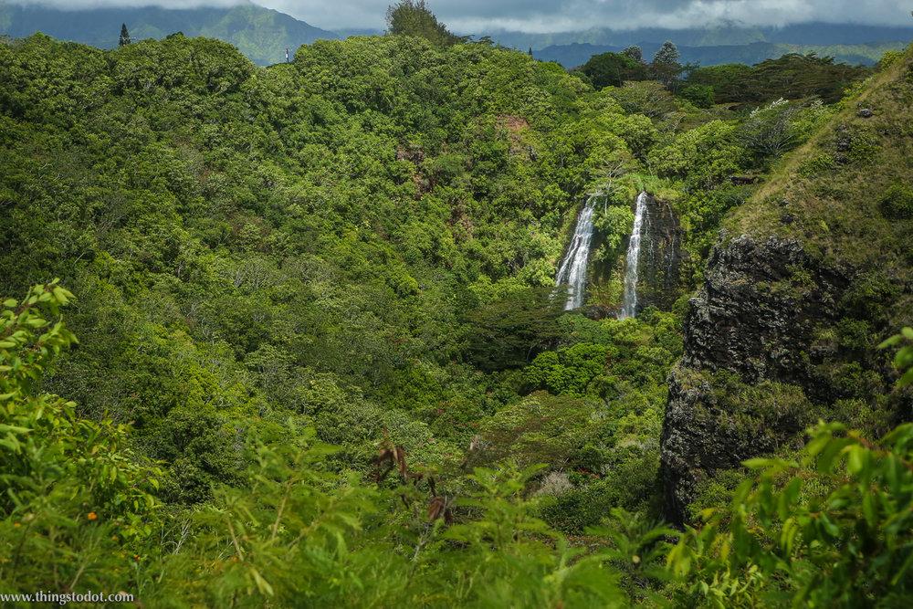 Opaeka'a Falls, Kauai, Hawaii.Photo: Jonathan Moeller (www.jmoellerphoto.com).Image©www.thingstodot.com