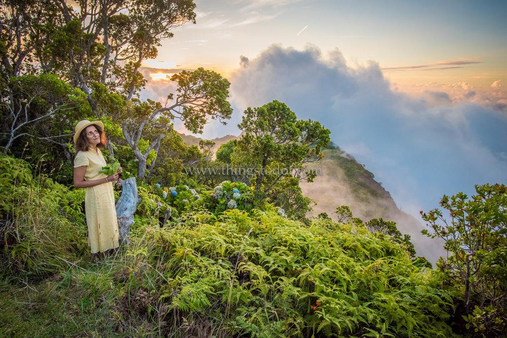 Kalalau Lookout, Kauai, Hawaii.
