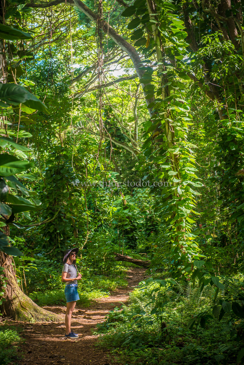 Wailua Falls Hike, Kauai, Hawaii.