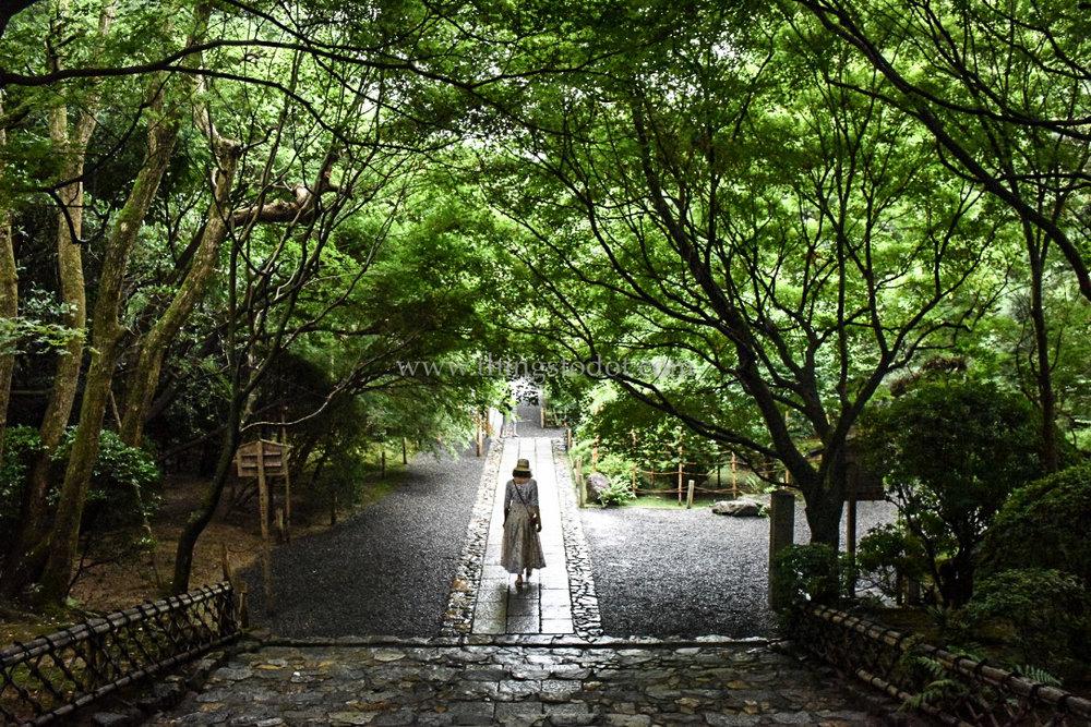 Ryoan-ji, Kyoto