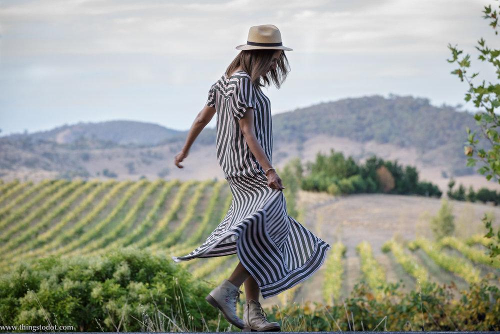 First Ridge Wines, Mudgee vineyards, Mudgee NSW, Australia. Photo:Noel Dawson, Image©www.thingstodot.com.