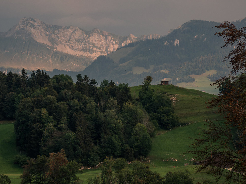 Buergenstock Wald Hotel views, Buergenstock, Switzerland. Photo: Gunjan Virk.