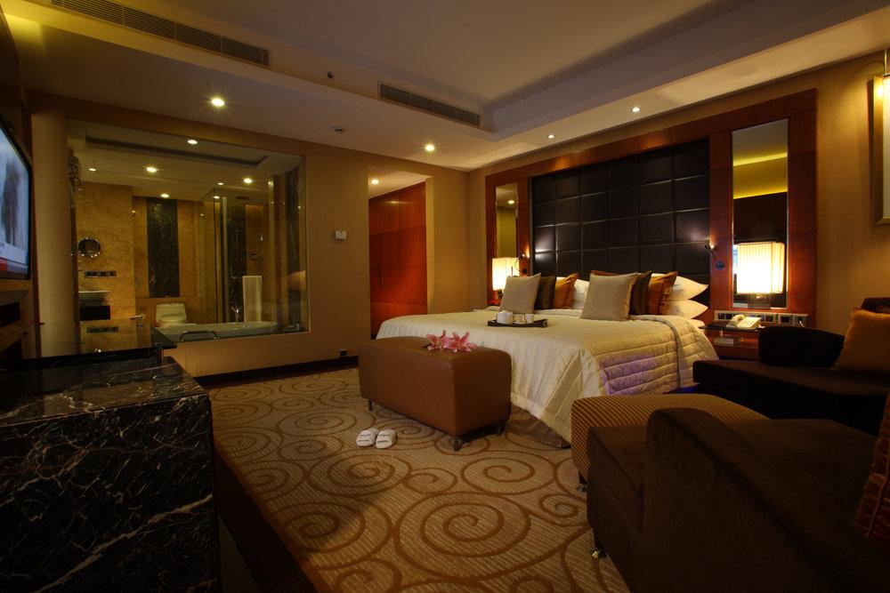 Deluxe Suite, Radisson Blu Plaza Delhi Airport Hotel. www.thingstodot.com.