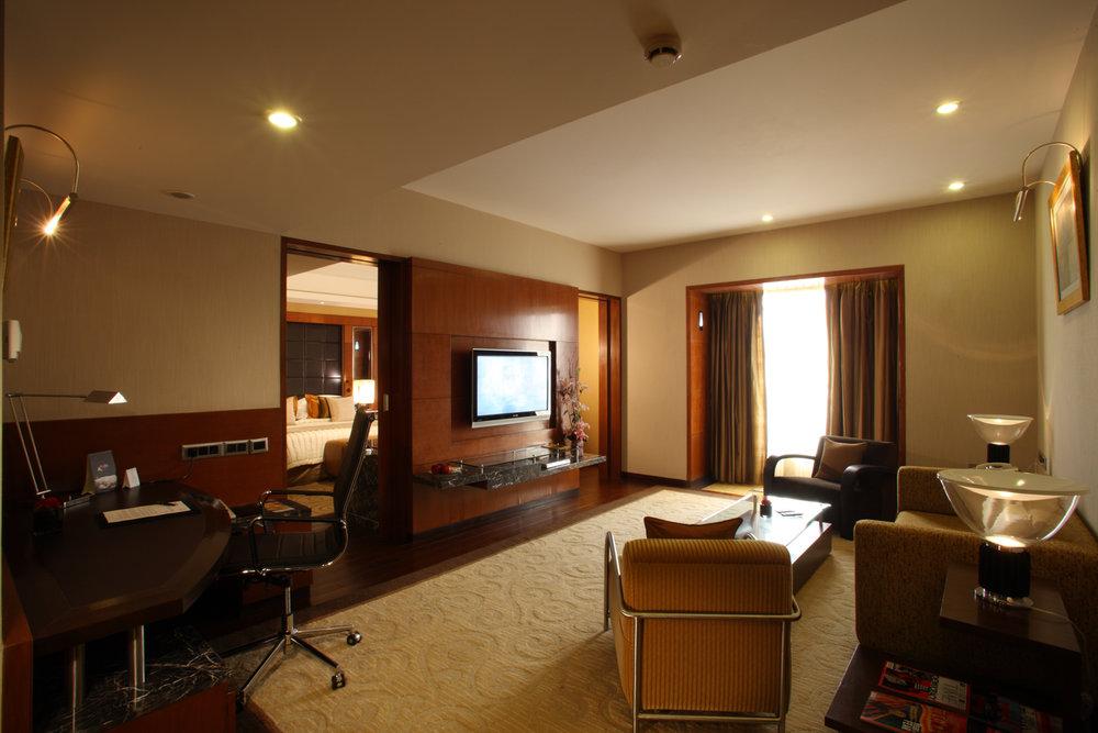 Radisson Blu Plaza Delhi Airport Hotel, Deluxe Suite. www.thingstodot.com.