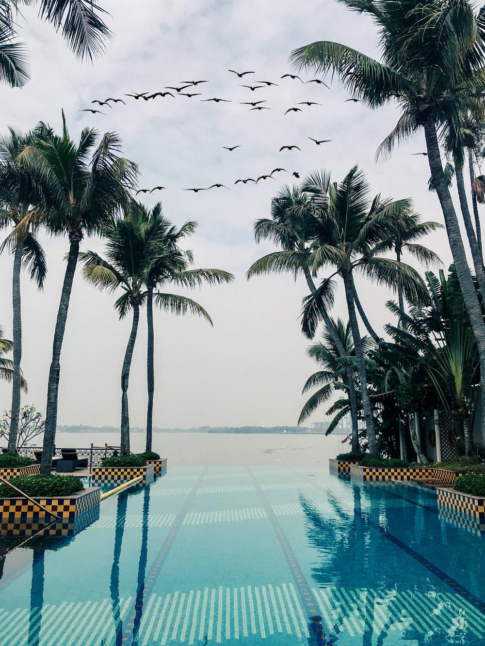 Taj Malabar Resort & Spa, Kochi, Kerala, infinity pool. Photo©www.thingstodot.com.