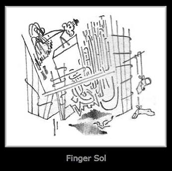 Finger Sol.jpeg