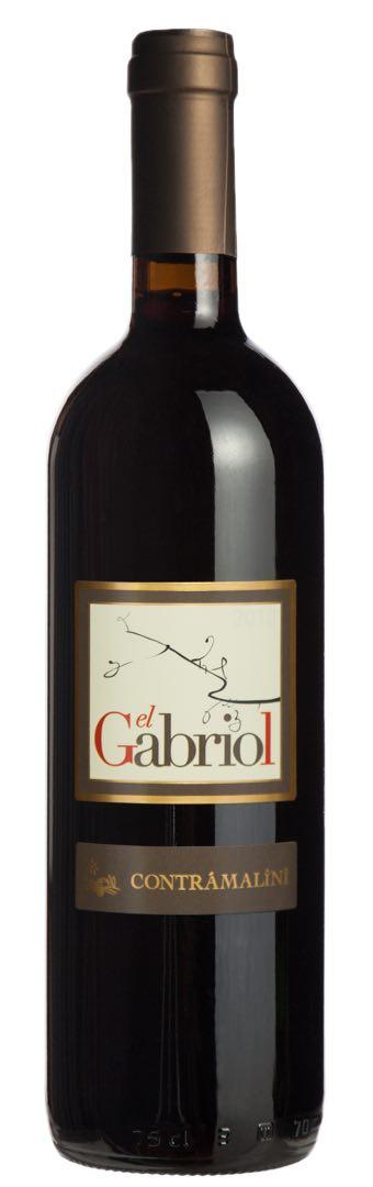 - El GabriolRosso del Veronese IGT