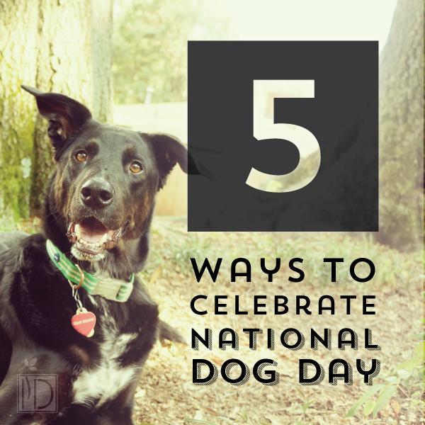 5 dog day pin