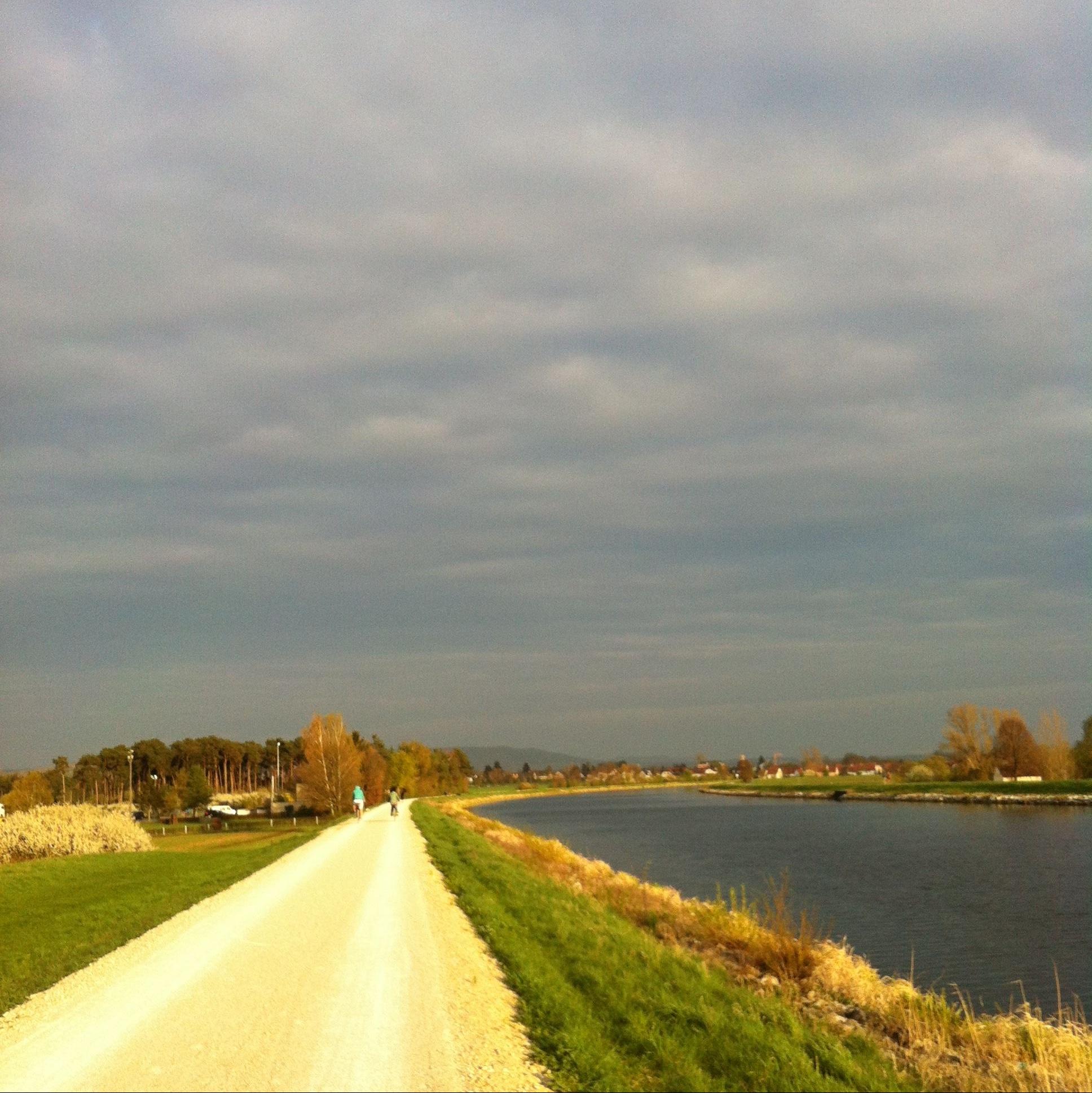 thankfulness: trails I ran
