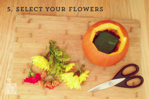 Select the flowers you would like to use in your arrangement and trim the stem, leaving about three to four inches of stem. Place you wet flower sponge inside your pumpkin. Insert the flowers into the sponge until the entire brim is filled.