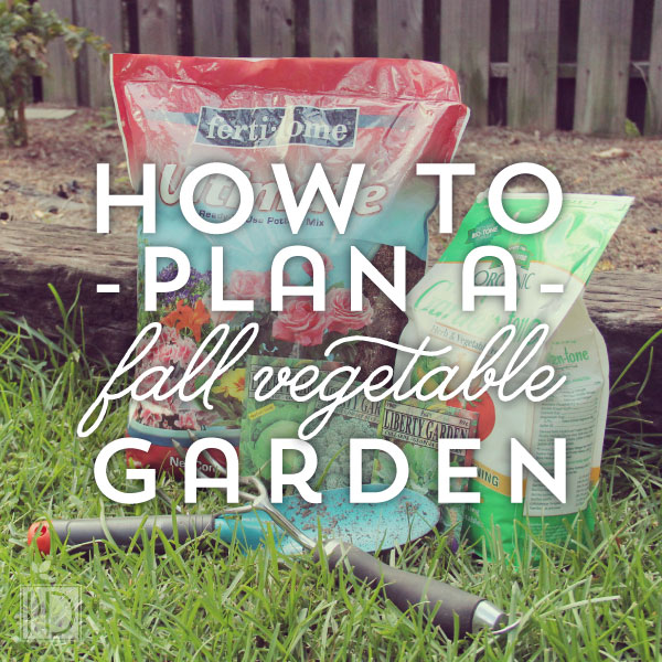 How to Plan Your Fall Garden