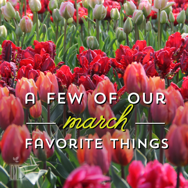 A few of our March favorite things