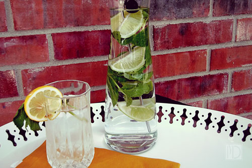 Mojito Infused Water
