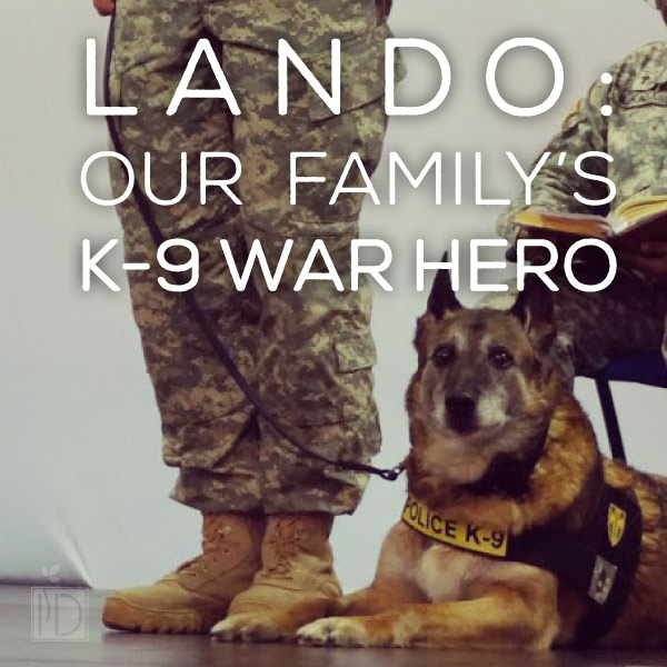 Lando: Our Family's Canine War Hero