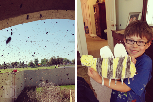 Murphy's Law of Deployment.  Something will go wrong as soon as your spouse leaves.  The bee swarm inspired many art projects!