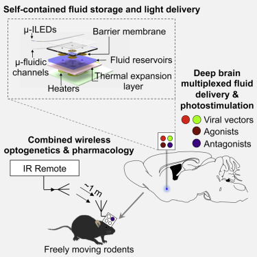Wireless optofluidics neural probes