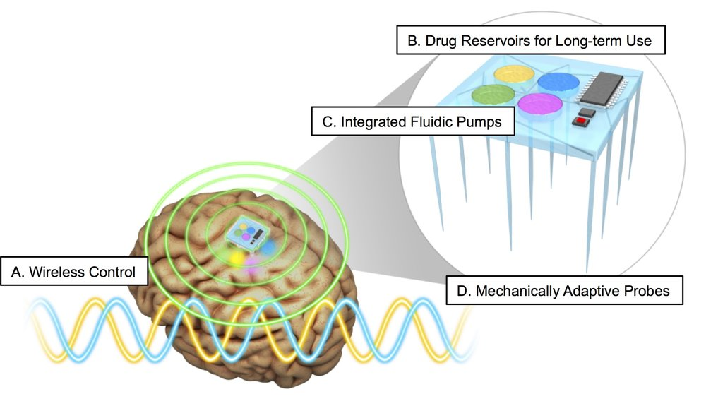 Clinical applications of microfluidic neural probes will require advances in chronic and wireless integration with the nervous system