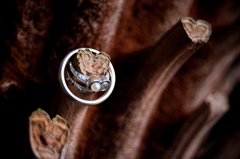 Detail of wedding rings on heart shaped branch